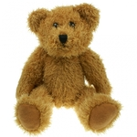25cm Plain Sparkle Bear