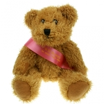 Sparkle Sash Bear